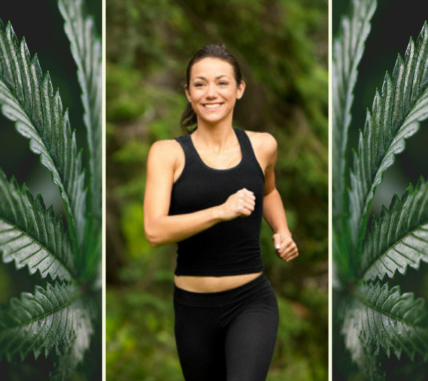 CBD to Your Routine